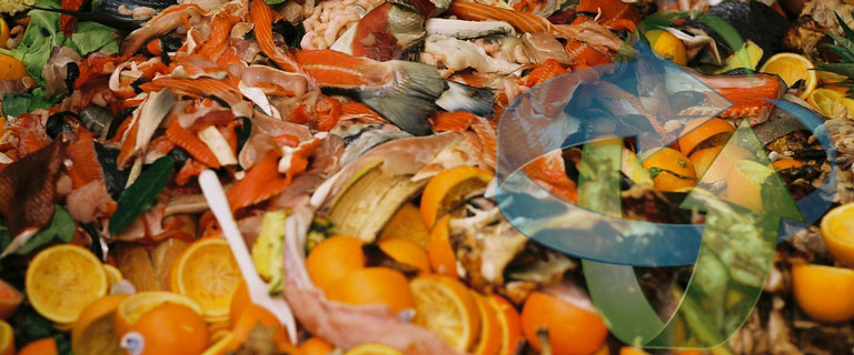 Food-Waste-Management-sml.jpg