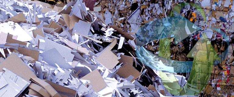Paper-Recycling-Waste-Management-sml.jpg